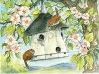 WF#13-wrens-nest